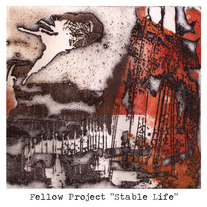 "FELLOW PROJECT ""Stable Life"""