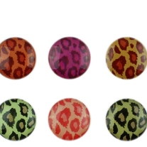 Leopard Home Screen Buttons