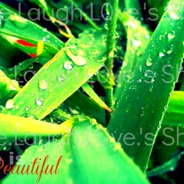 Life is beautiful 5x7 print - 1