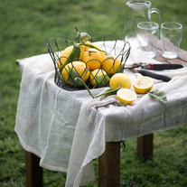 Photo Prints- Meyer Lemons on Table
