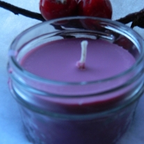 Cranberry_20spice_204_20ounce_20soy_20candle_20by_20the_20fizzy_20pop_20collection_20(960x1280)_medium