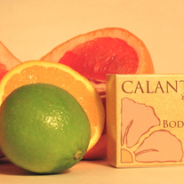 Citrus Face & Body Bar