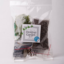 Desktop Terrarium Kit in a Bag