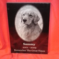 Pet-memorial-dog-marble-etched_medium