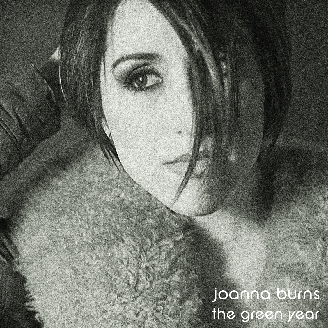 Joanna_burns_-_tgy_cover_original