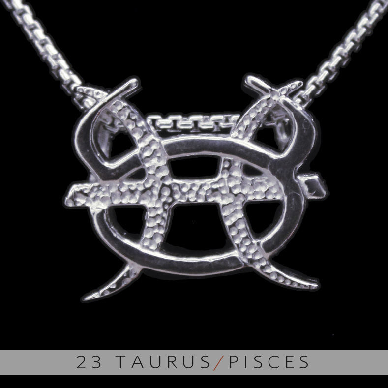 Unity design concepts the taurus and pisces silver unity pendant the taurus and pisces silver unity pendant mozeypictures Choice Image