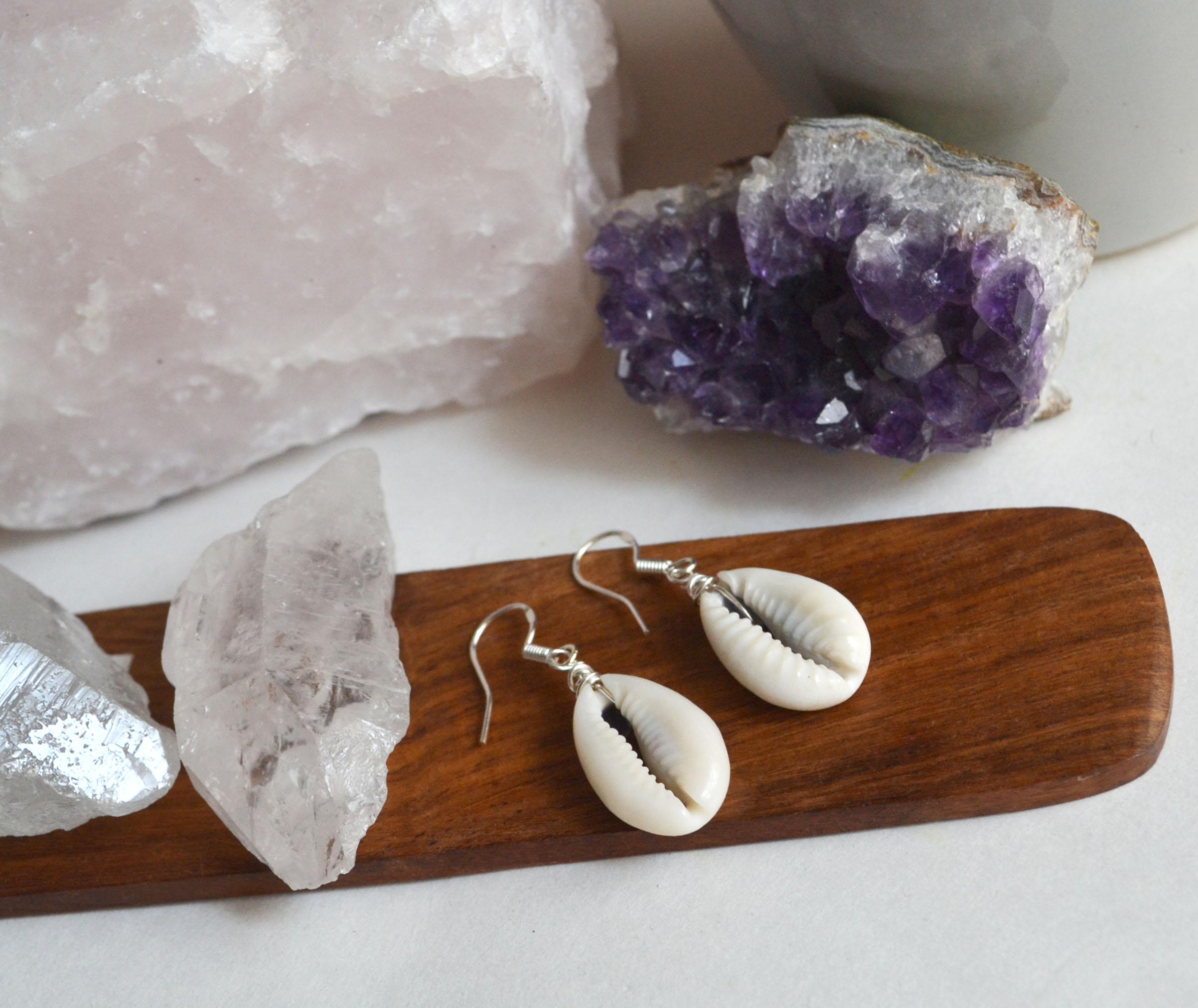 Cowrie Shell Earrings, Small Shell Earrings, Cowrie Shells, Beach Earrings   Thumbnail 1