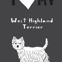 West Highland Terrier, 5x7 print