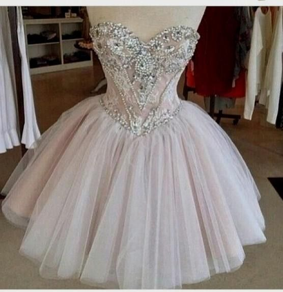 Solo Dress Homecoming Dress,Tulle Homecoming Dresses,Lace Homecoming ...