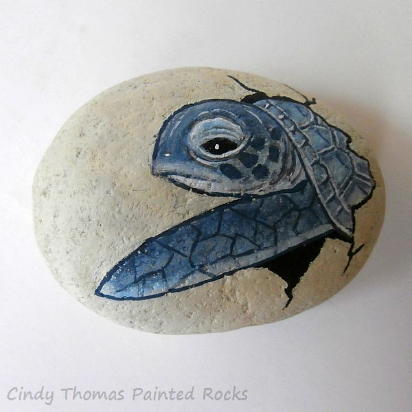 Painted Turtles Hand In Front Of Face