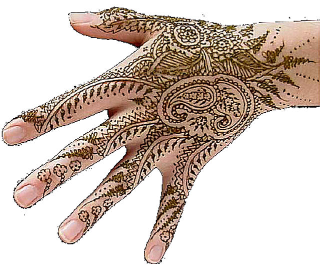 Henna tattoo starter kit eden starr designs online for Henna tattoo kits target