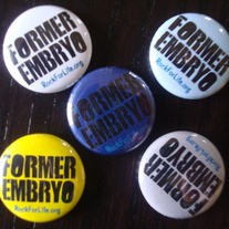 Former Embryo Button (multiple colors)