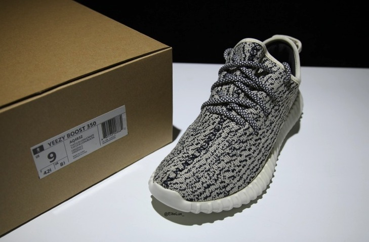 Adidas Alphabounce \\ u0026 Yeezy Boost 350 Turtledove Review