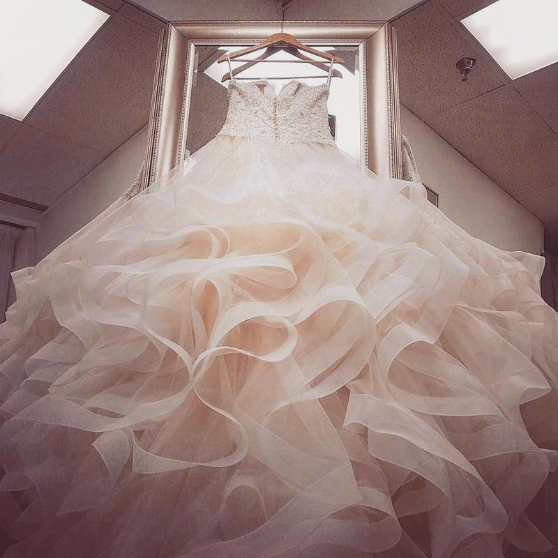 Blush Pink Organza Ruffles Ball Gowns Wedding Dresses With White