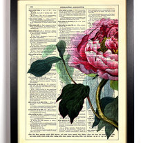 Image of Big Half Rose, Vintage Dictionary Print, 8 x 10
