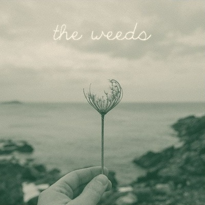 "The weeds - roots/routes 10"" silk screened cover [ltd. 50]"