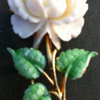 JJ Vintage White Rose Celluloid Brooch Pin
