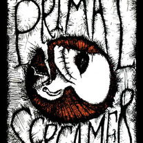 Primalscreamer_cover_medium