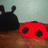 Lady Bug Photo Prop Set