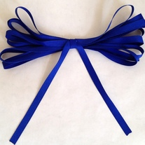 Navy Blue Ribbon