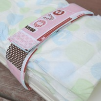 Diaper and Wipes Strap {in love}