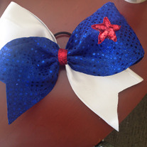 Patriotic/school colors bow
