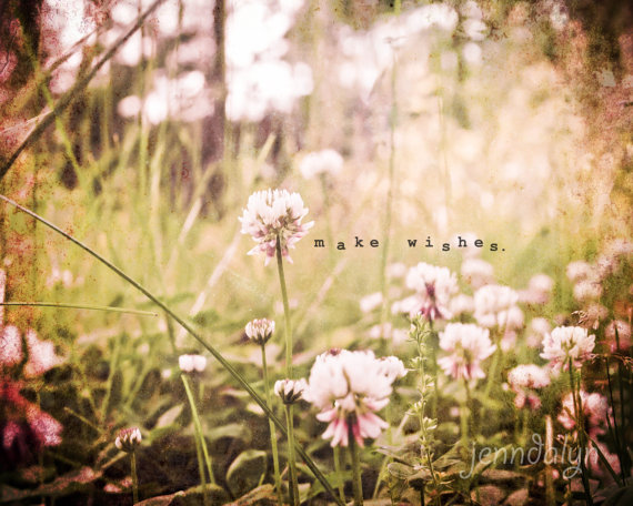 Make wishes 8 x 10 fine art photograph pastel landscape spring make wishes 8 x 10 fine art photograph pastel landscape spring flowers photography mightylinksfo