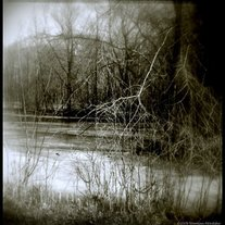Frozen_creek