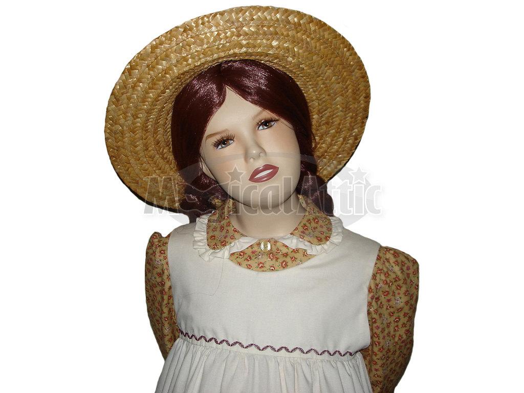 10e5319900a Custom Boutique Anne of Green Gables Girl Size Costume Dress Set