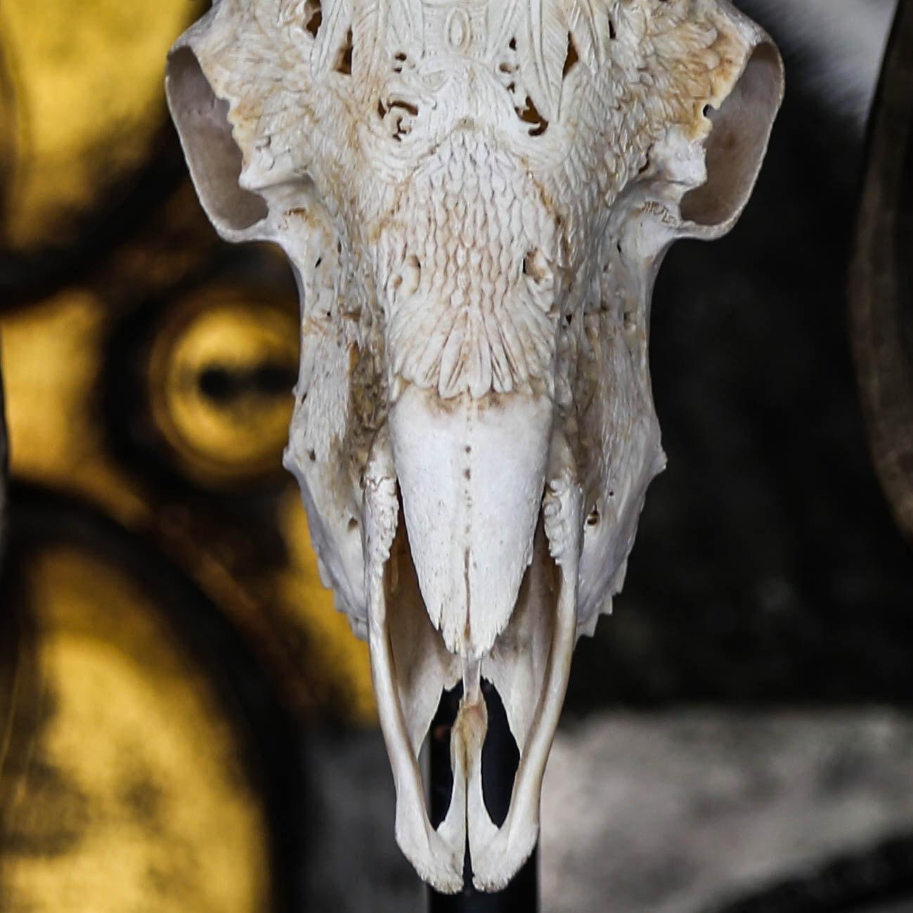 Download Hand Carved Tribal BIGHORN SHEEP Skull + Longhorns / Horns ...
