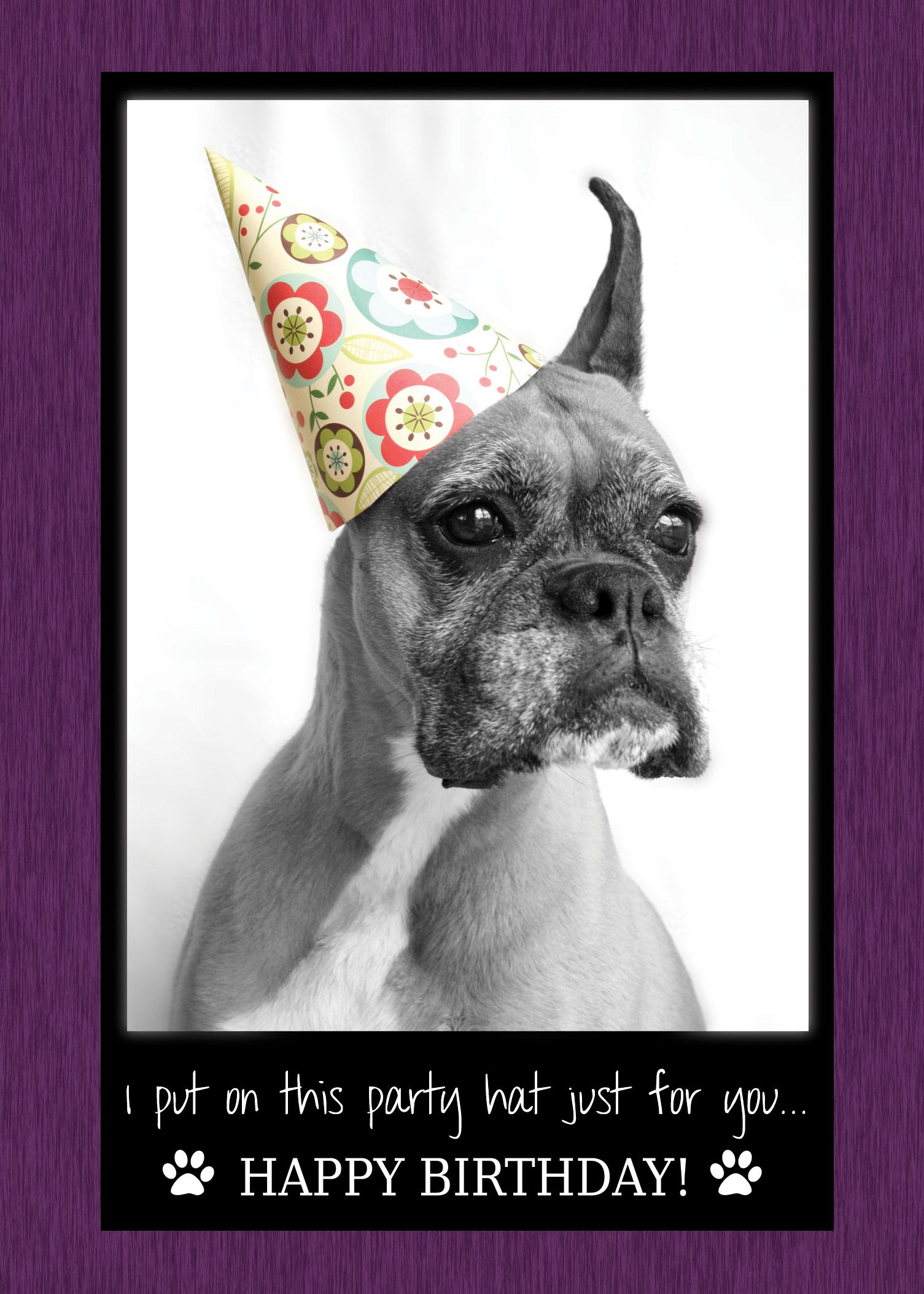 Amelia Greetings Happy Birthday On Storenvy