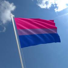 Bi sexual flag