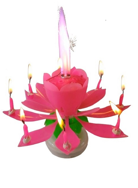 Pink Lotus Flower Birthday Exciting Candle 8 Exciting Candle