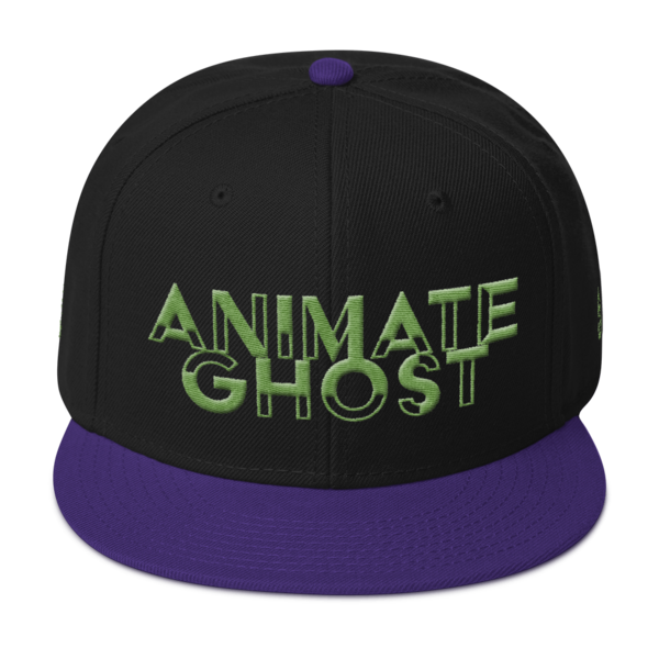 03f95a019 ANIMATE GHOST Snapback Hat from SOULROOTMEDIA